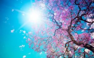 spring-10-640x400
